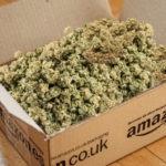 marihuana wysłana pocztą