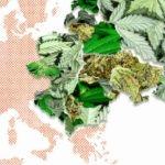 marihuana medyczna w unii europejskiej