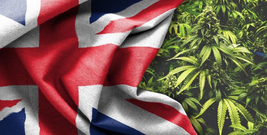 marihuana w UK