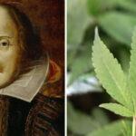 Szekspir i konopie