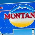 Stan Montana