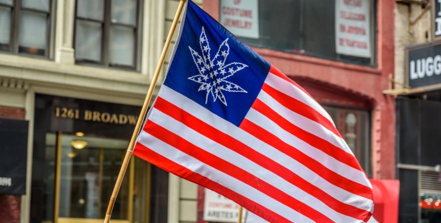 flaga USA z konopiami